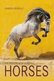 Descargar The World'S Most Beatiful Horses Boiselle Gabriele