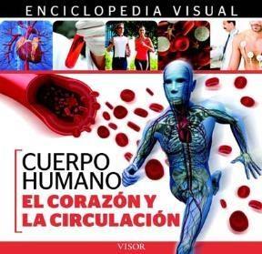 Descargar El Corazon Y La Circulacion  Enciclopedia Visual De Anatomia