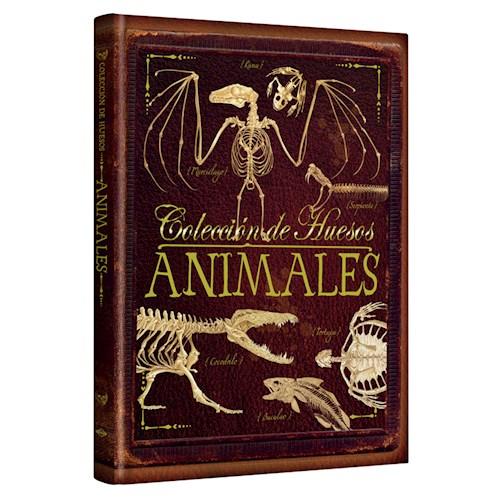 Libro Coleccion De Huesos Animales