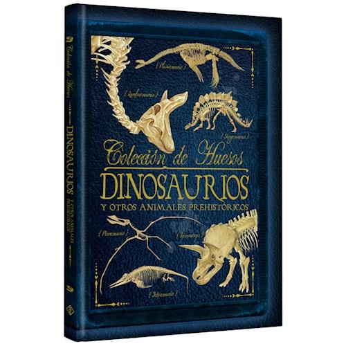 Libro Coleccion De Huesos Dinosaurios