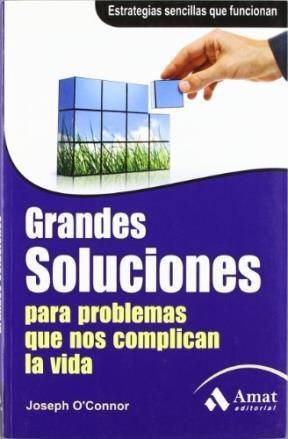 Libro Grandes Soluciones Para Problemas Que Nos Complican La Vida