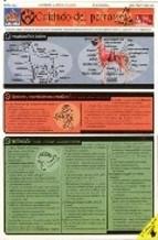 Libro Cuidado Del Perro - Lamina