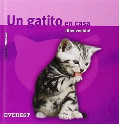 Libro Un Gatito En Casa: Bienvenido!