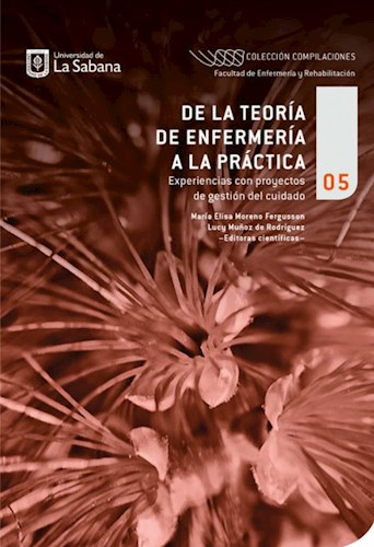 Libro De La Teoria De Enfermeria A La Practica